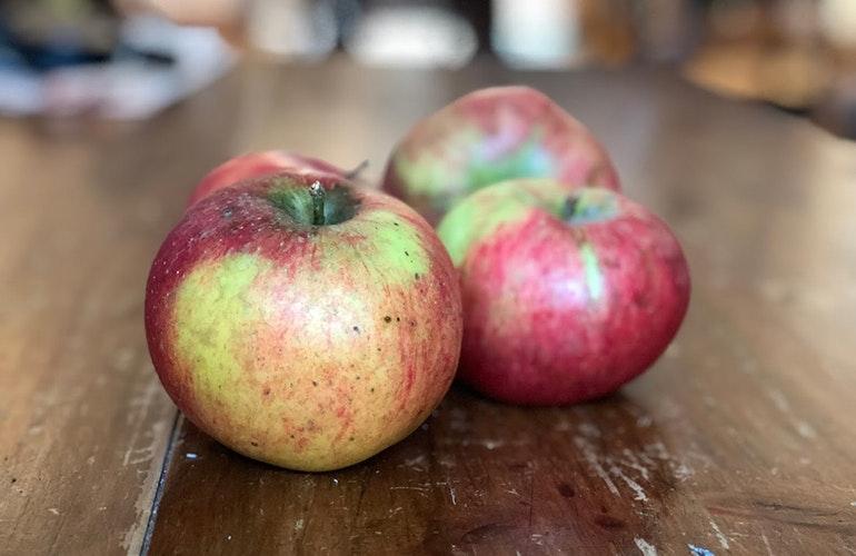 iPhone 8 apples portrait mode
