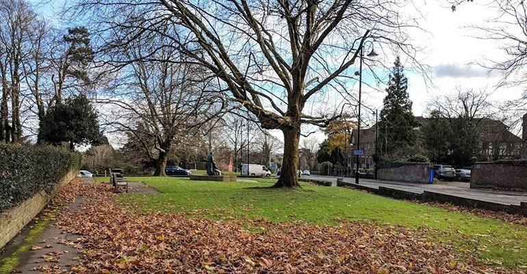Google-Pixel-2-camera-sample-autumn-leaves